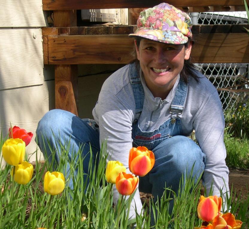 A gardener amongst tulips