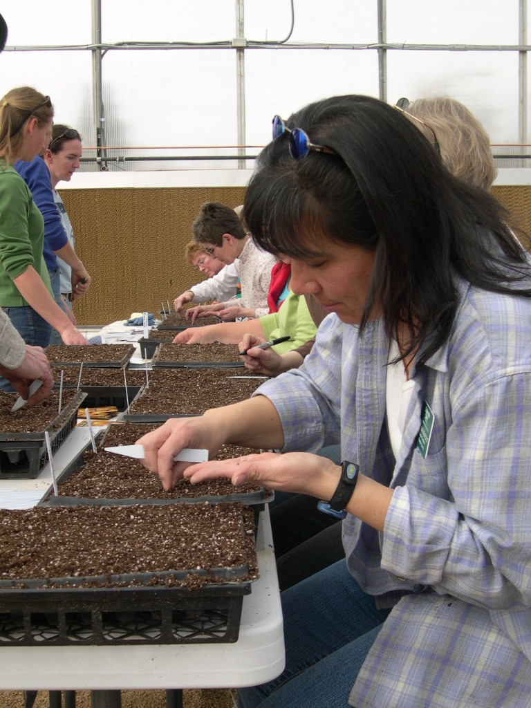 A group inspects several soil samples