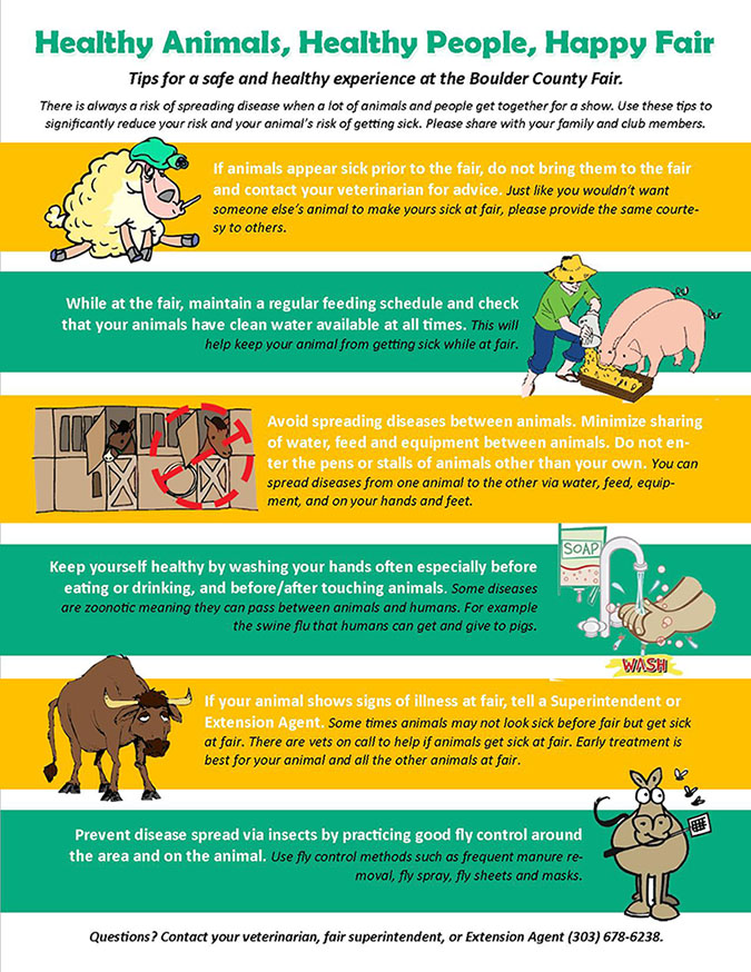 Infographic of Happy Animals, Health People, Happy Fair