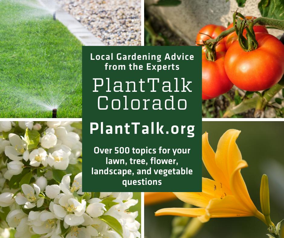 PlantTalk Colorado Logo